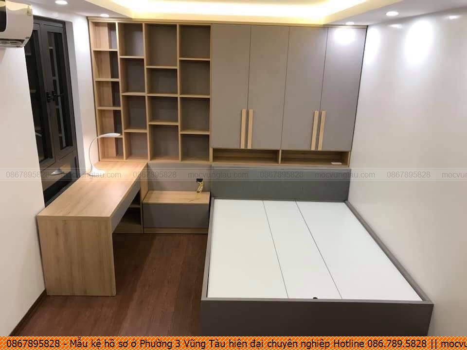 mau-ke-ho-so-o-phuong-3-vung-tau-hien-dai-chuyen-nghiep-hotline-0867895828